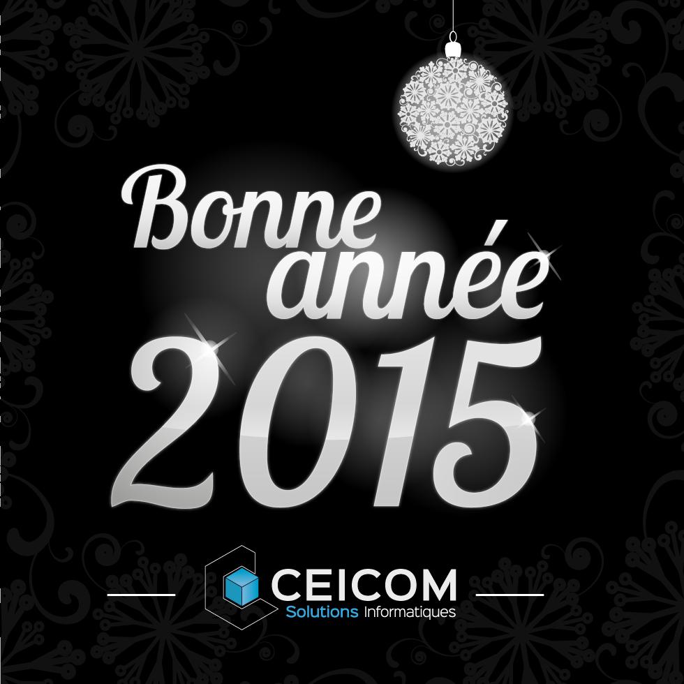 voeux-2015-ceicom-solutions